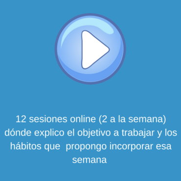 12 sesiones online