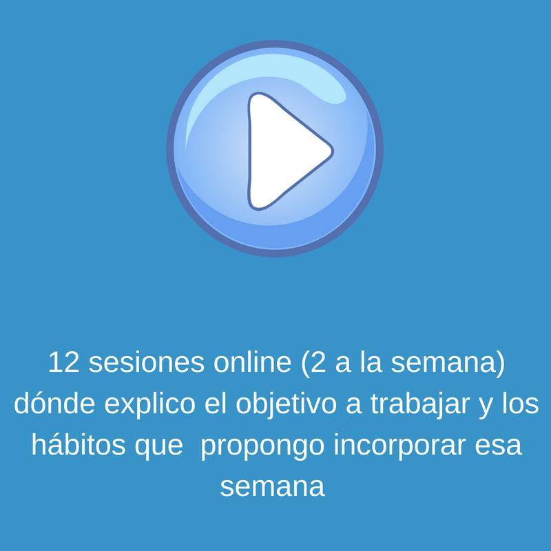 12 sesiones online