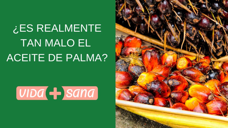 ¿Es realmente tan malo el aceite de palma?